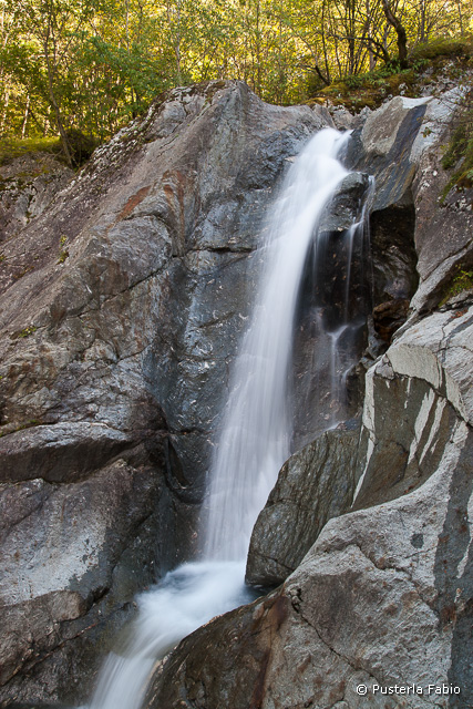 Allegra cascata