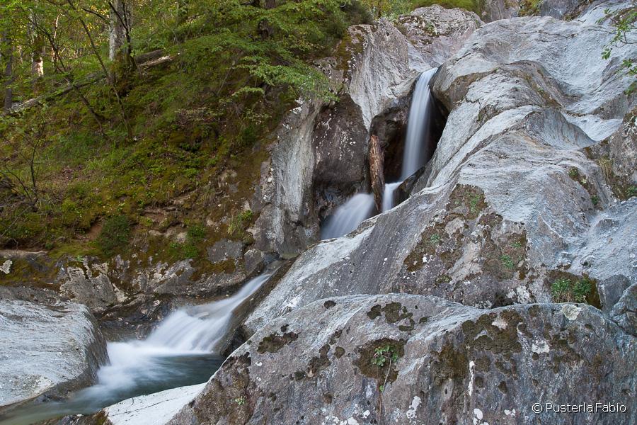 Bosco e roccia