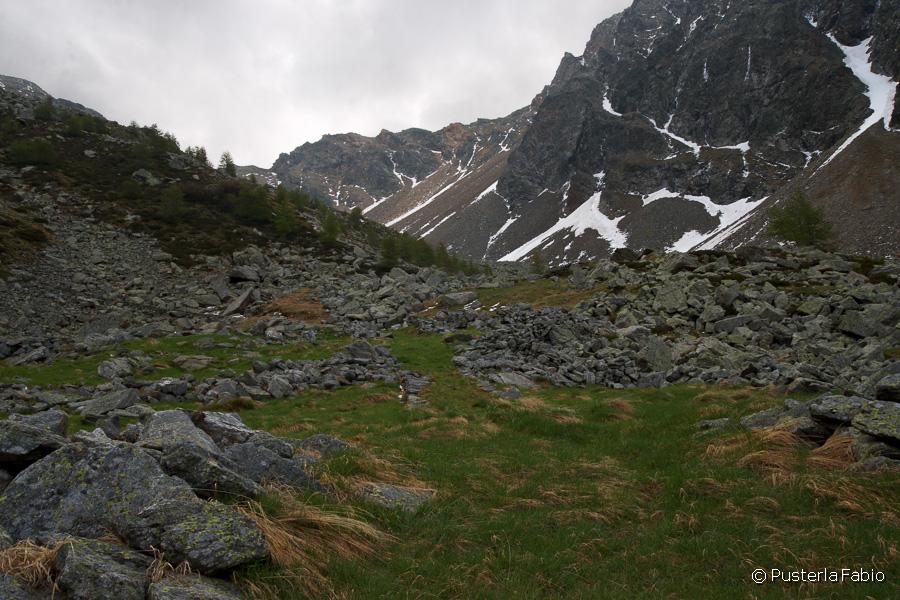 I pascoli in alta valle