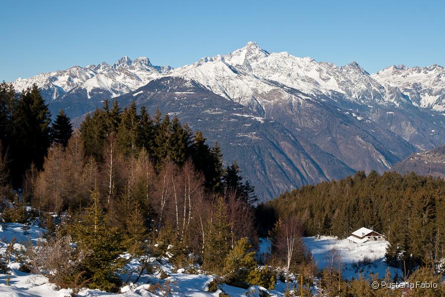 Panorama sul monte Disgrazia