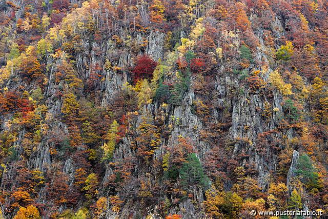 L'autunno tra le rocce
