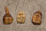 Mostra - Il legno racconta, le Wunderkammer degli AVI